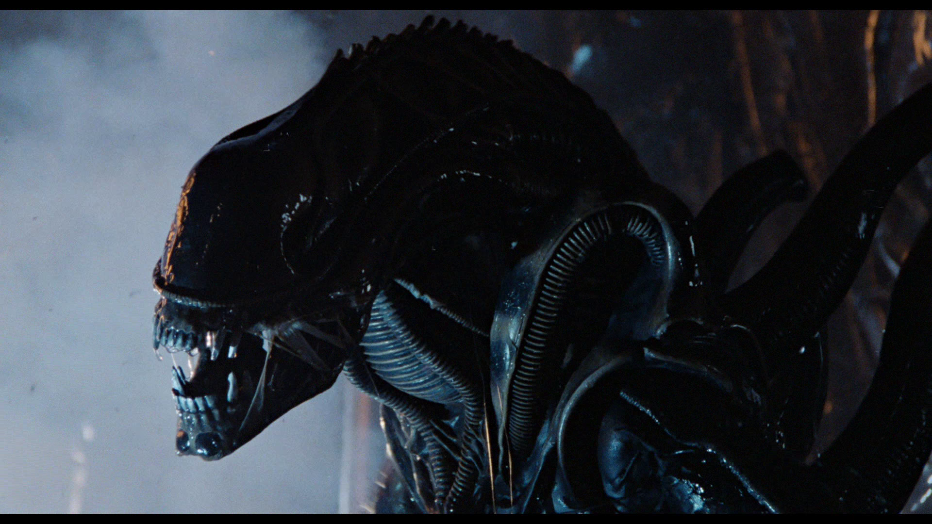 Stat Anything – Xenomorph | New Monster for Fifth Edition