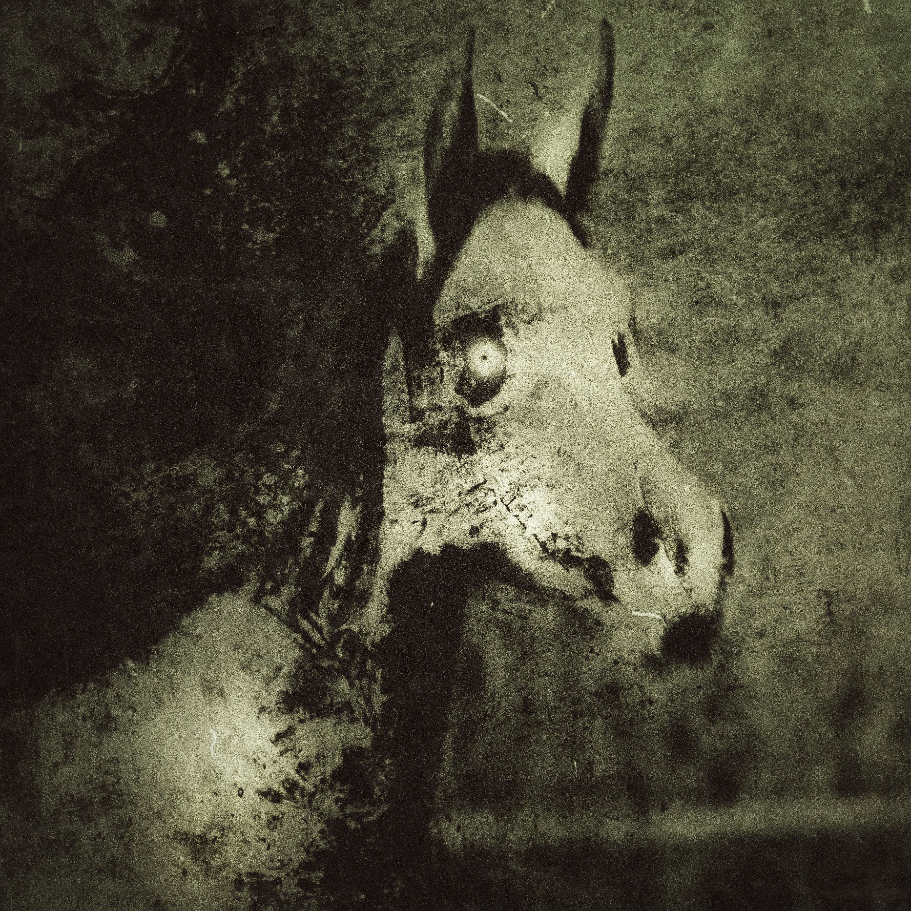 La Segua | New Monster for Fifth Edition